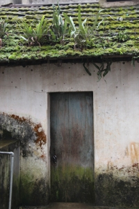 Green grass could grow on your own roof too... (photo taken in Sapa, Vietnam)