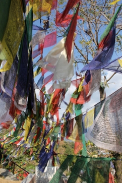 Nepalese praying flags hung by faithful people.